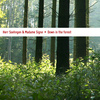 Herr Soehngen & Madame Signe - Down in the Forest